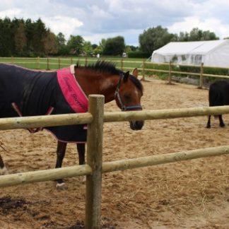Paardenbak omheining