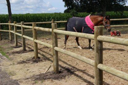 Complete paardenbak